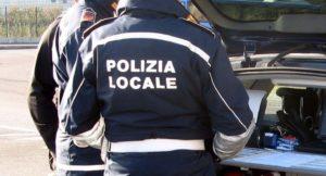 Cerro Maggiore, Lombardia: cane abbattuto in strada