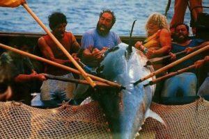 La tonnara di Favignana chiude, esultano gli animalisti