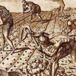 La civiltà e la cultura sconosciute nei social